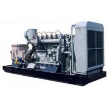 Gerador de energia de gás natural ajustado 50Hz / 1500rpm