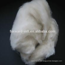 gekämmte feine Schaf Kaschmir Wollfaser