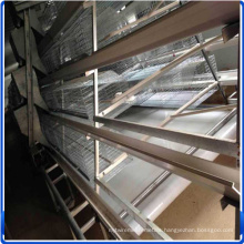 Chicken Supplier Chicken  Cage for Sale