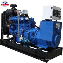 Groupe électrogène diesel ricardo de type ouvert 20-308kw