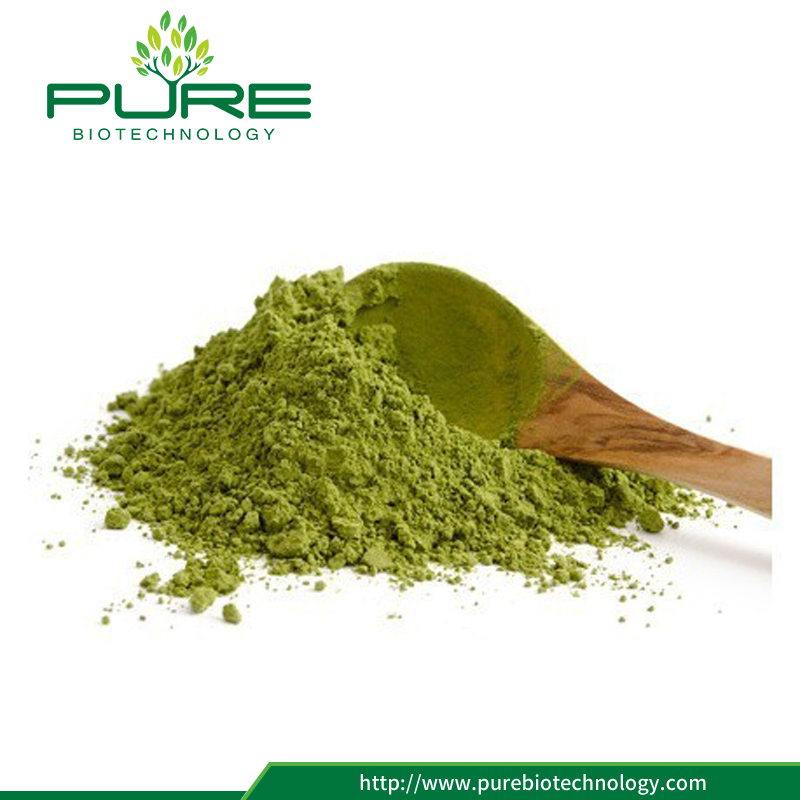 Moringa Oleifera Leaf extract Powder