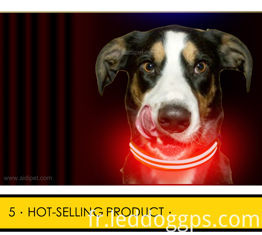 Dual Optical Fiber Led Dog Collar