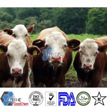 Feed Grade D Biotin USP Supplement Manufacturers