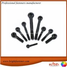 Parafusos de aço de aço carbono de alta qualidade DIN444