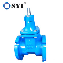 Cast Iron Pn16 Dn100 Water Valve Resilient Seated Gate Flanged Valve gate valve
