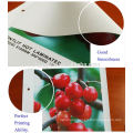 outdoor Smooth 540gsm 1000*1000D 9*9 banner cutter for Supermarket