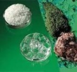 Super Absorbent Polymer for Agriculture