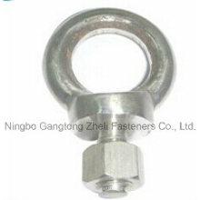 DIN580 de boulon à oeil en acier avec l'acier inoxydable