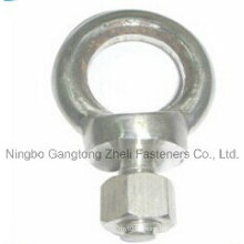 DIN580 of Steel Eye Bolt with Stainless Steel