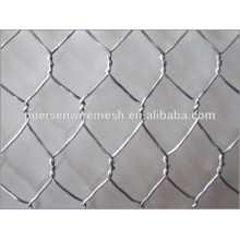 High quality Hexagonal wire mesh, netting for raising chicken