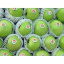 Frischer grüner Gala-Apfel zum Export