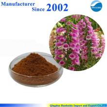 Fornecimento chinês de alta qualidade pura natureza radix rehmannia extrato, Radix Rehmannia Preparata Extrato