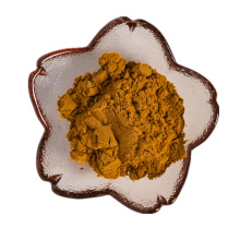 best selling products of fresh pinenut extract pine nuts powder