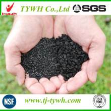 Activated Carbon Gas Adsorption