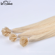 Extension plate en gros cheveux russes meilleure qualité