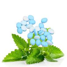 Feuille de Stevia éco stevia menthe plus populaire