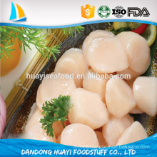 iqf frozen bay scallop price of seafood
