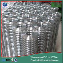 export welded wire mesh 1/2