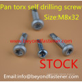 Self Tapping Screw Roofing Screw Building Screw