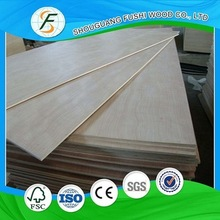 Good Quality  Funiture Material White Birch Plywood