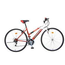 Vélo de montagne en acier de 28 po (2804)