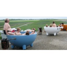 Fiberglass SPA SPA Massage SPA Pool