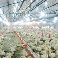 Equipo completo de aves de corral automáticas para granja de pollos