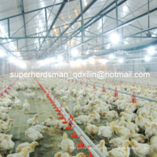 Top Quality Automatic Full Set Poultry Farm Equipment