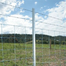 Lowest Price Cattle Wire Mesh Fence/ Farm Field Fence