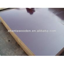1220x2440x18mm madera de contrachapado marina de álamo