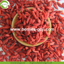 New Harvest Factory Supply Seco Ningxia Wolfberry