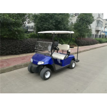 Professional for 2 Seaters Gas Golf Carts easy go golf carts for sale cheap supply to Guinea Manufacturers