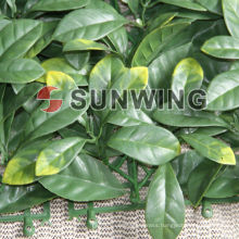 Fashion and decorative garden plastic hedge from Sunwing