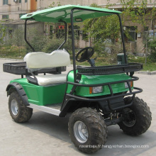 Ce véhicule utilitaire de sport électrique de 2 places approuvé par CE (DH-C2)