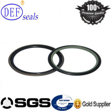 PTFE/Teflon Piston Hydraulic Seals for Cylinder