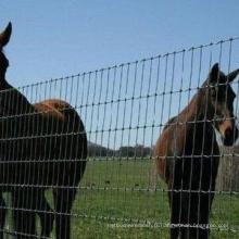 Fourniture d'usine Clôture de ferme de haute qualité et clôture de champ et clôture de bétail