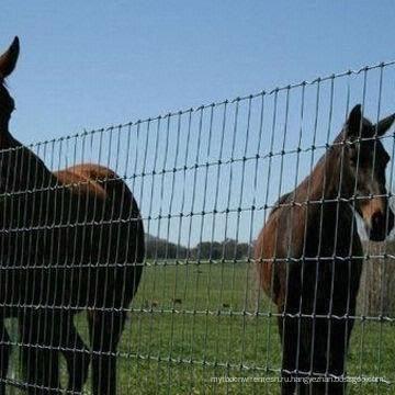 Фабрика поставляет высококачественный забор для фермы и полевой забор и забор для крупного рогатого скота