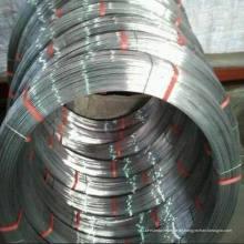 Galvanisierter Stahl Ovaler Draht / Flachdraht