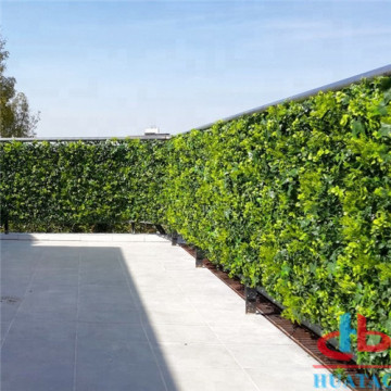 UV Coated Artificial Boxwood Hedge Untuk Outdoor
