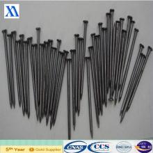 Super qualité et prix concurrentiel ongles de fer communs (XA-CN4)