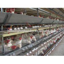 Chine bonne qualité prix bon marché nouvelle conception automatique H type fabricant de cage de poulet fabricant