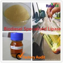 Biodiesel-Enzym-Lipase, industrielle Lipase