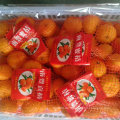 Exporting Quality Standard von frischem Baby Mandarin