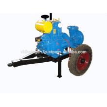 Diesel Motor Pumpset (DIESEL BETRIEBEN, MIT PETTER / LISTER INDIAN STYLE MOTOR) PRIVATE MOTOR HP Motor Rpm NO von 540M3 / HR