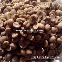 Granos de café verde arábica