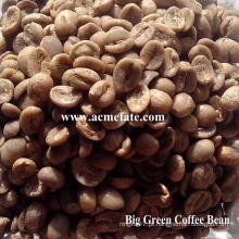 Grãos de café verde arabica