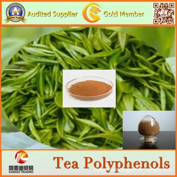 Factory Supply Natural Green Tea Extract Tea Polyphenols