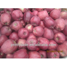 new crop red huaniu apple