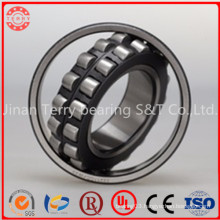 Self-Aligning Bearing Spherical Roller Bearing (23124CC/WW33)