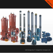 Pompe à eau / pompe submersible / pompe d'eaux d'égout